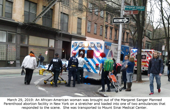 This image has an empty alt attribute; its file name is PPNY-Ambulance-3-29-2019.jpg